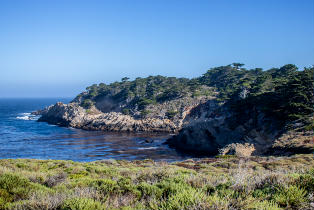 Point Lobos Part II